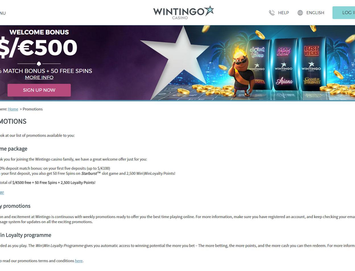 Wintingo3