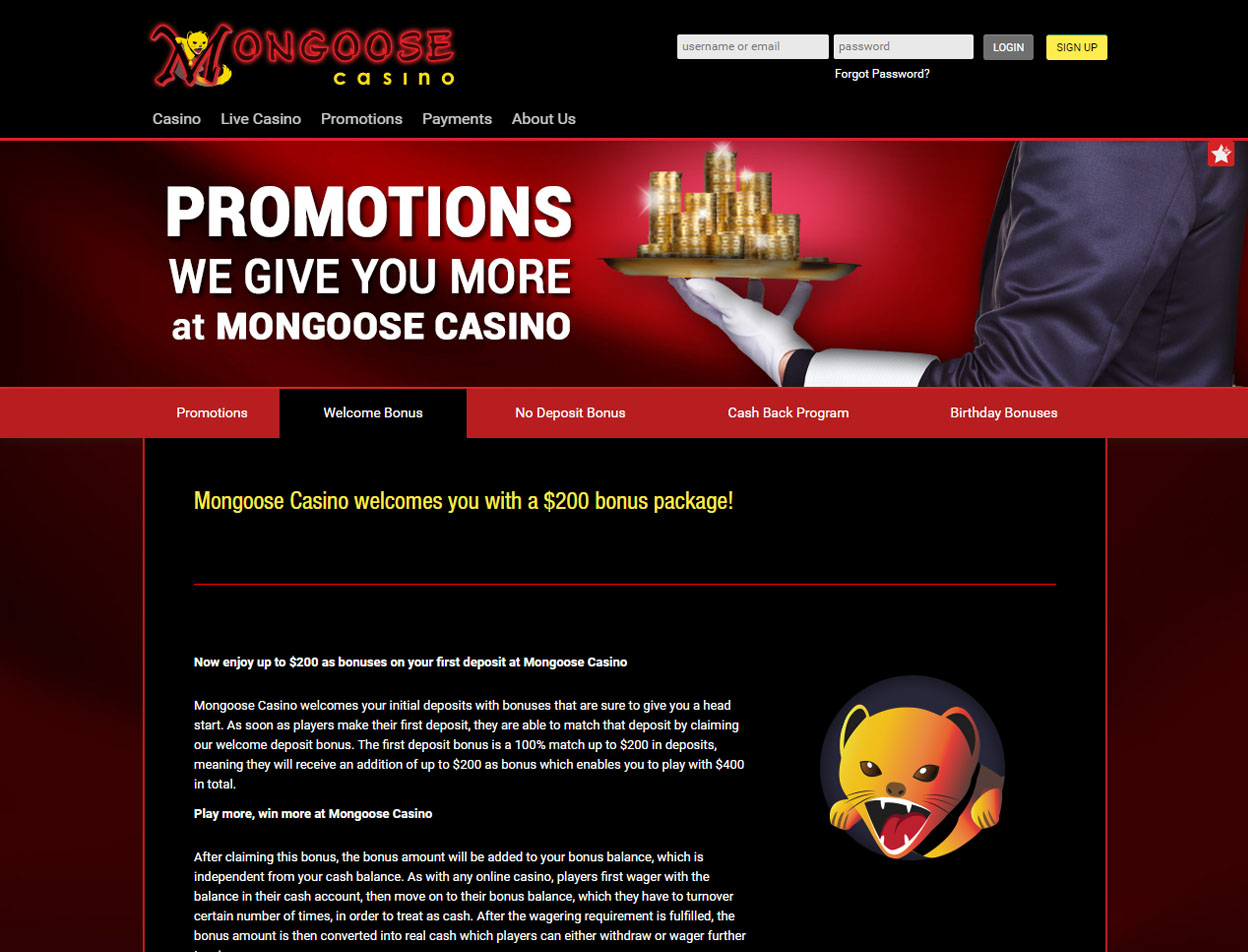 Mongoose Casino3