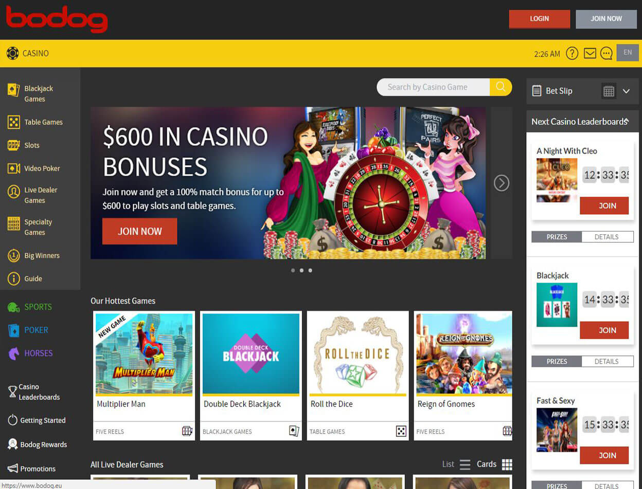 Bodog Casino Screenshot 3