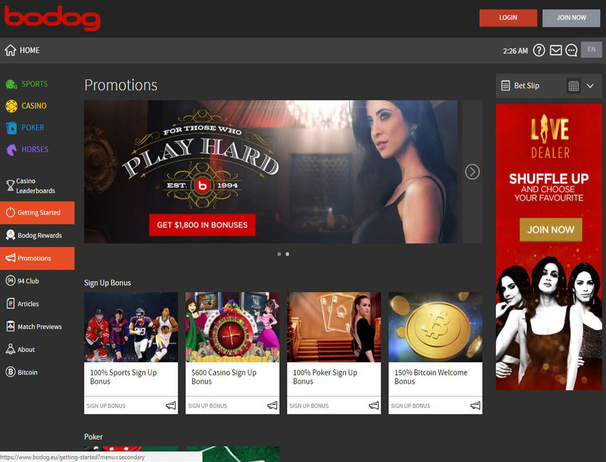 Bodog Casino Screenshot 4