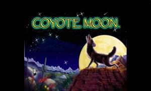 Coyote Moon Slots