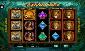 Exotic Cats Screenshot 3