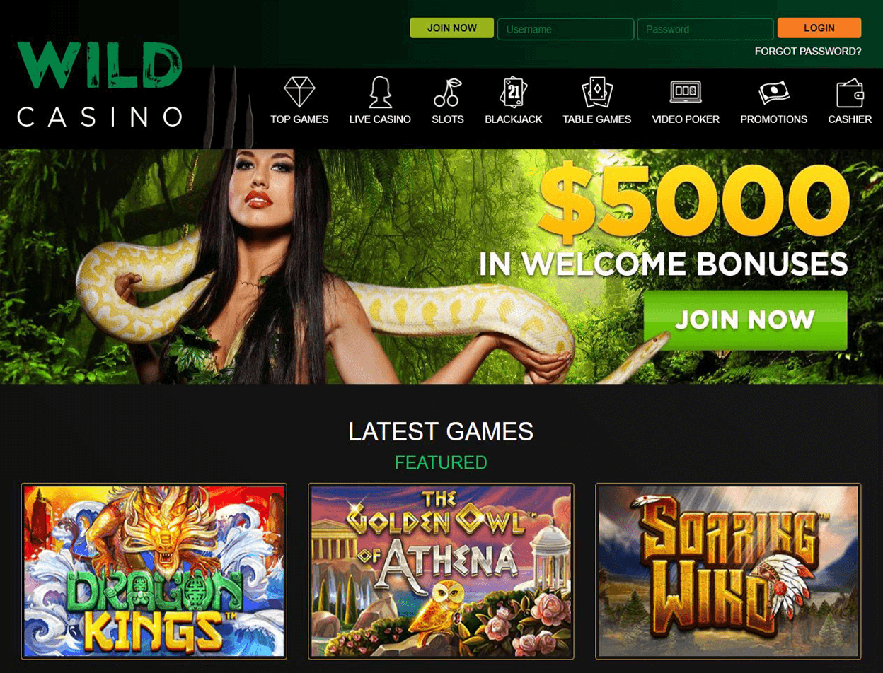 Wild Casino Screenshot 1