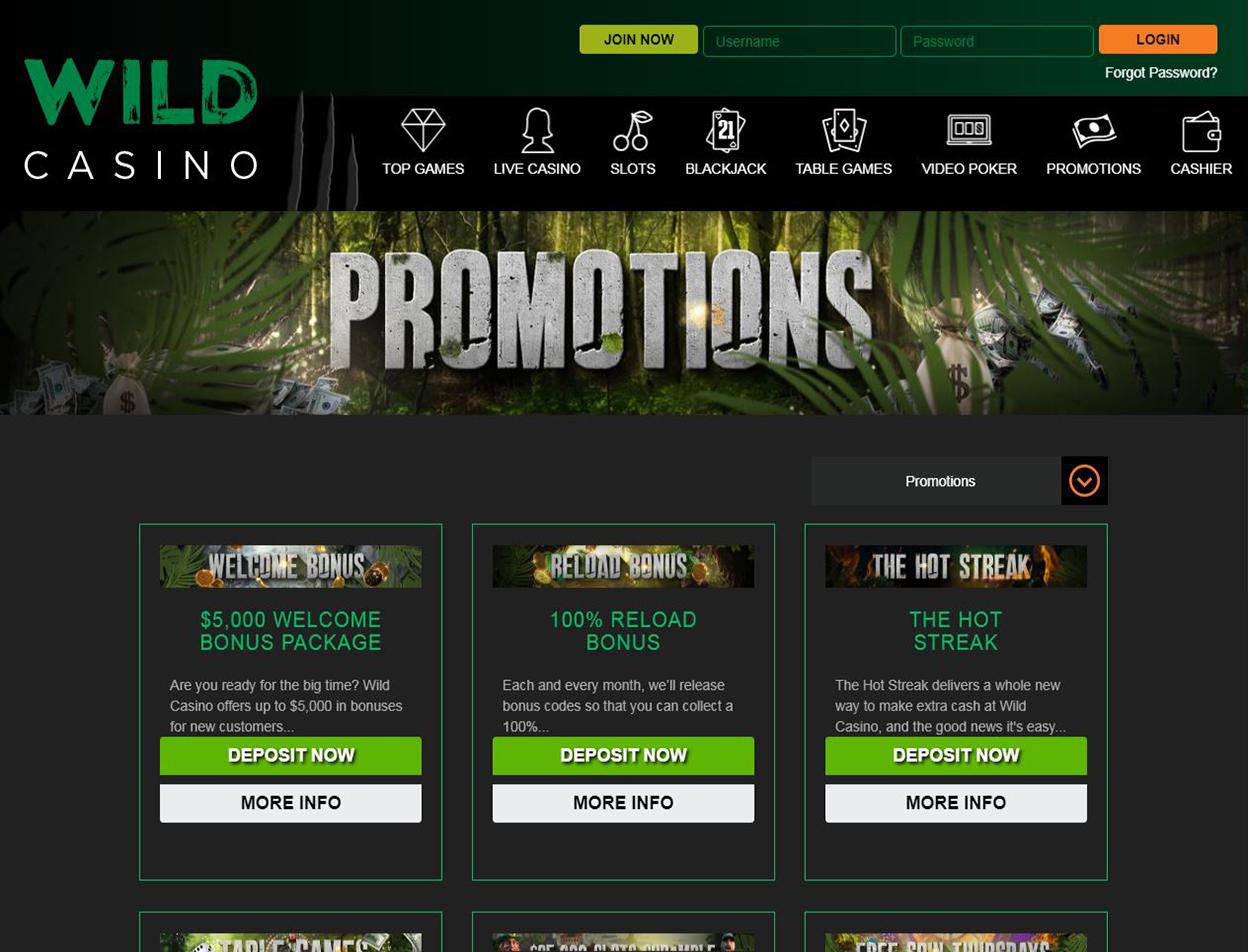 Wild Casino Screenshot 2