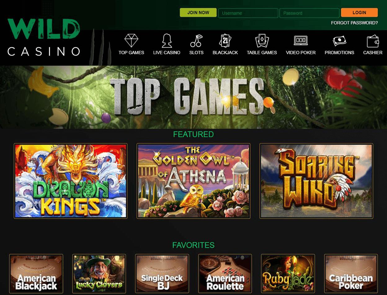 Wild Casino Screenshot 3