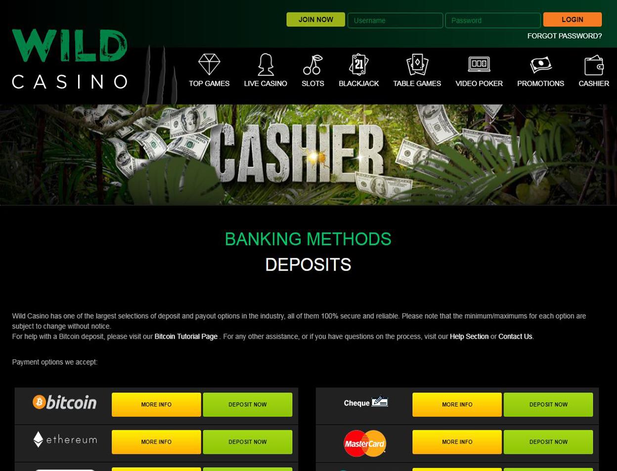 Wild Casino Screenshot 4